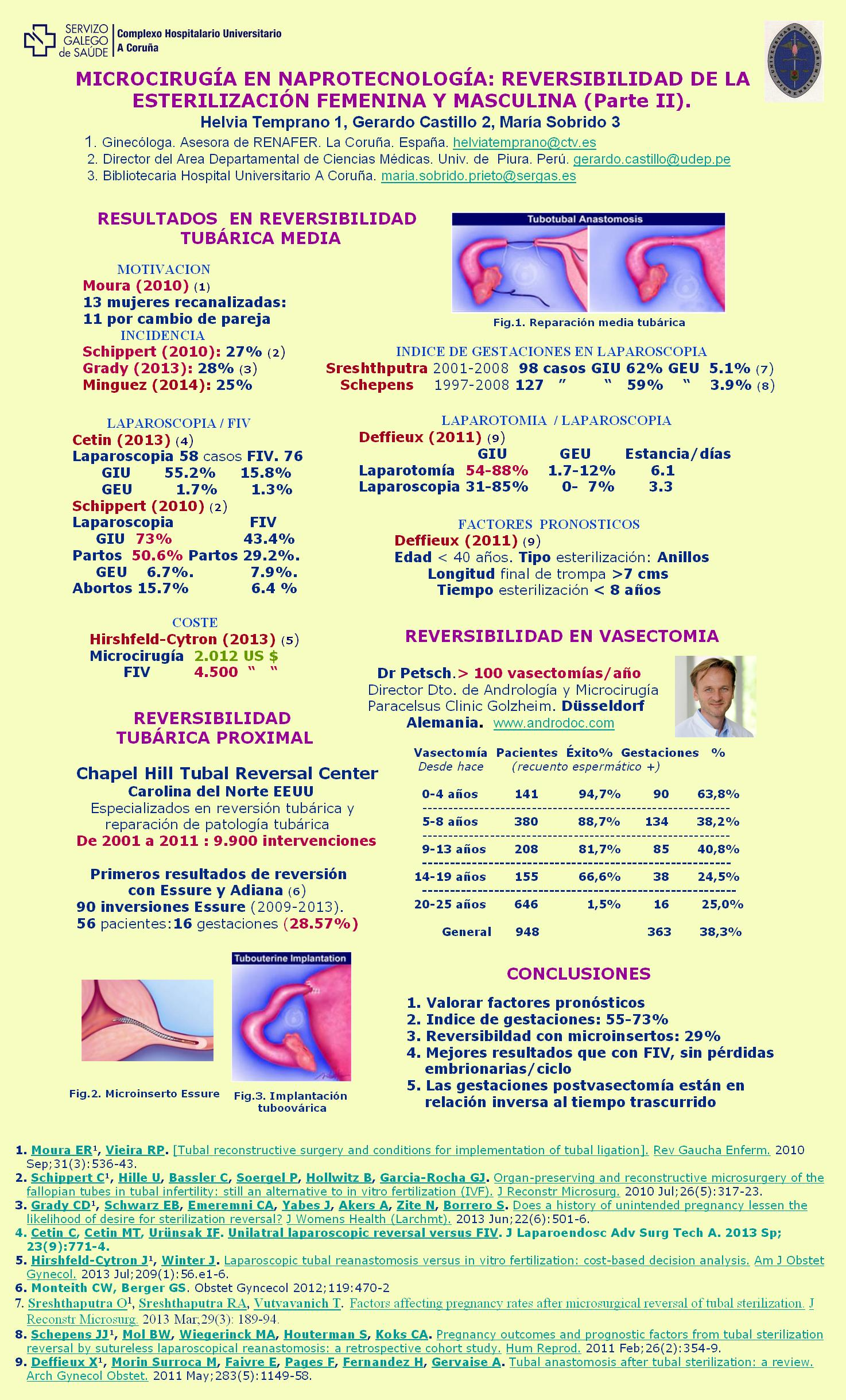 Póster IV CIRF-H Temprano-3